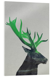 Acrylic print  Deer In The Aurora Borealis - Andreas Lie