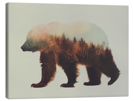 Canvas print  Norwegian woods, the brown bear - Andreas Lie