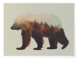 Premium poster  Norwegian woods, the brown bear - Andreas Lie