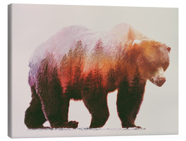 Canvas print  Brown bear - Andreas Lie