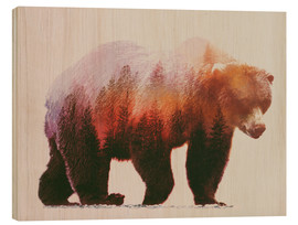 Wood print  Brown bear - Andreas Lie
