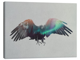 Canvas print  Eagle In The Aurora Borealis - Andreas Lie