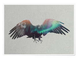 Poster  Eagle In The Aurora Borealis - Andreas Lie