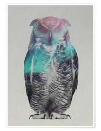 Poster  Owl in the aurora borealis - Andreas Lie