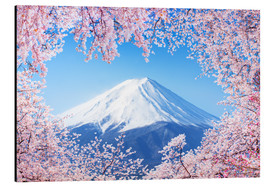 Aluminium print  Mount Fuji in Japan during the cherry blossom in spring - Jan Christopher Becke