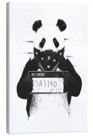 Canvas print  Bad panda - Balazs Solti