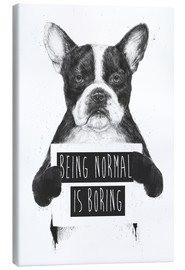 Canvas  Being normal is boring - Balazs Solti