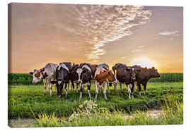 Canvas  beautiful sunset cows gathering - Remco Gielen
