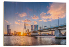 Wood  Rotterdam The Erasmus Bridge - Remco Gielen