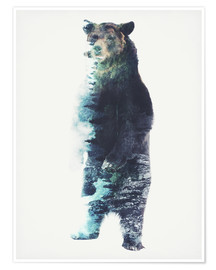 Premium poster  Bear in the Woods - Barrett Biggers