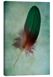 Canvas print  Green feather - Jaroslaw Blaminsky