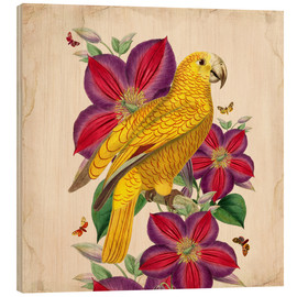 Wood print  Oh My Parrot V - Mandy Reinmuth