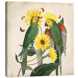 Canvas  Oh my parrot II - Mandy Reinmuth