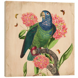 Wood print  OhMyParrot IV - Mandy Reinmuth