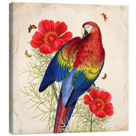 Canvas  Oh My Parrot III - Mandy Reinmuth