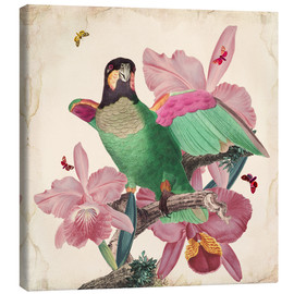 Canvas  Oh My Parrot VIII - Mandy Reinmuth