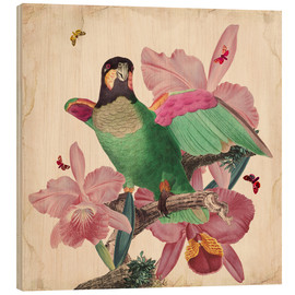 Wood print  Oh my parrot VIII - Mandy Reinmuth
