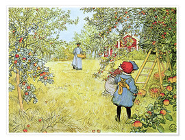Premium poster The Apple Harvest