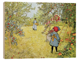 Wood  The Apple Harvest - Carl Larsson