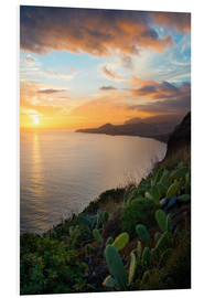 Foam board print  Bay of Funchal at Sunset, Madeira - Markus Kapferer