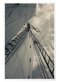 Premium poster Sails and masts of a schooner