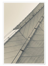 Premium poster Sails of a schooner in Gloucester