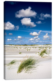 Canvas print  Amrum beach feelings - Reiner Würz