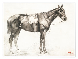 Premium poster Horse With Saddle And Bridle