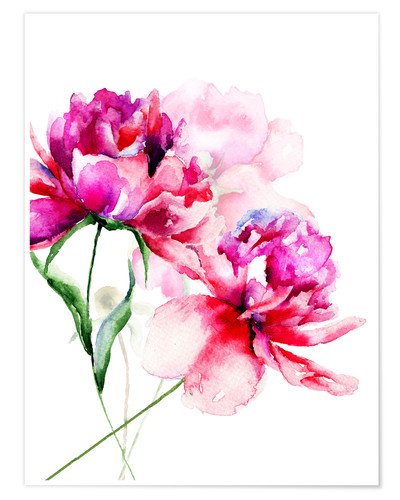 Premium poster Beautiful peony flowers