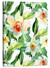 Canvas print  Daffodils in watercolor