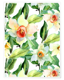 Premium poster Daffodils in watercolor