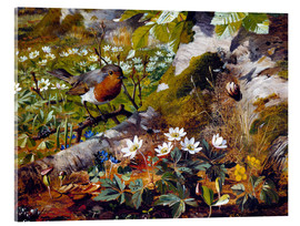 Acrylic print  Robin at the foot of a tree - Olaf August Hermansen