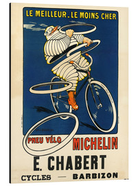 Aluminium print  Bicycle tires Michelin - H.L. Roowy