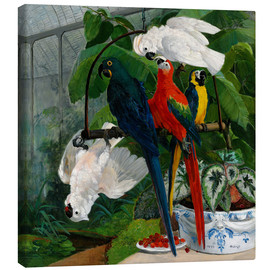 Canvas print  Parrots in a greenhouse - Filippo Palizzi