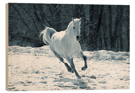 Wood print  Gray mare in snow