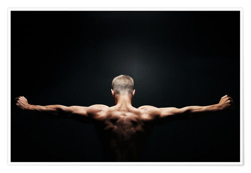 Premium poster Muscular back and shoulders