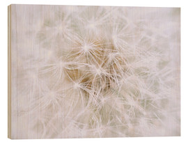 Wood print  Dandelion - white as snow