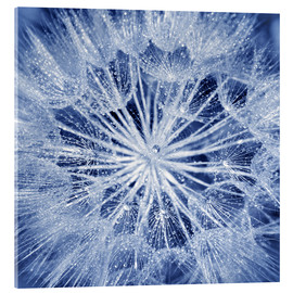 Acrylic print  like an ice crystal