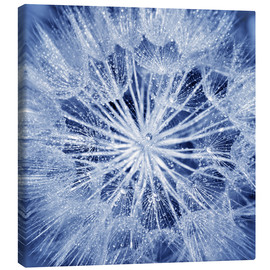 Canvas  like an ice crystal