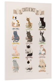 Forex  cat breeds french - Kanzi Lue