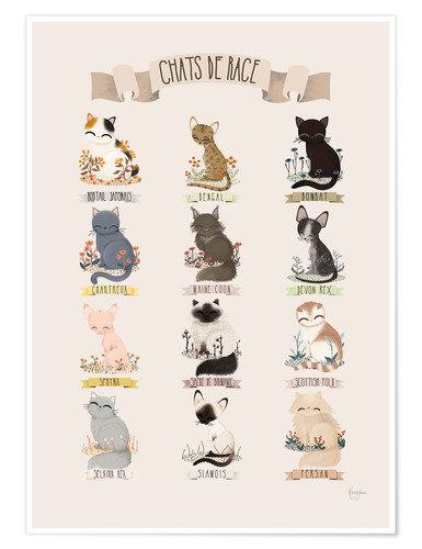 Poster cat breeds