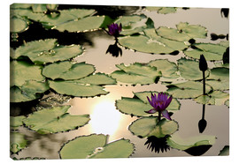 Canvas print  Purple lotus flower