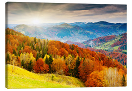 Canvas print  Hillside in autumn