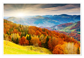 Premium poster  Hillside in autumn