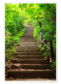 Premium poster Stairway through the forest
