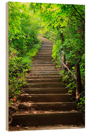Wood print  Stairway through the forest