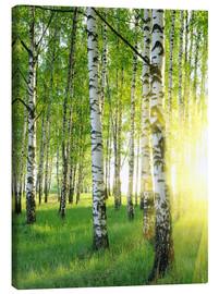 Canvas  Birches in summer forest
