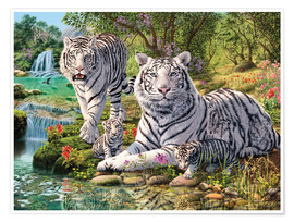 Premium poster  White Tiger Clan - Steve Read