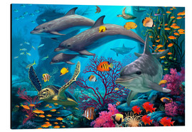 Aluminium print  Secrets Of The Reef - Steve Read