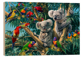 Wood print  Koala Outback - Steve Read